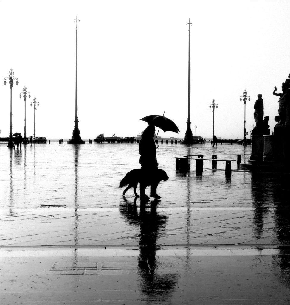 LE VIE DELLE FOTO, Trieste si inonda di fotografia